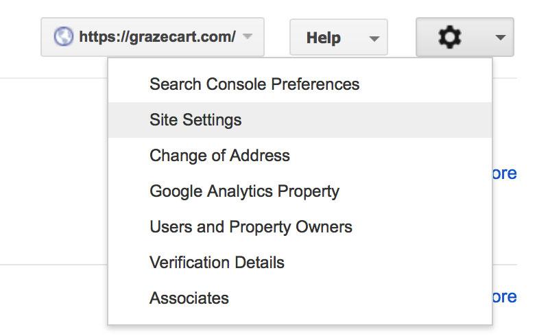 Google Site Settings
