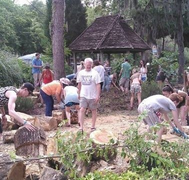 A Southern Food Forest Workshop- single pass