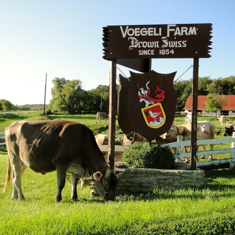 Voegeli Farms