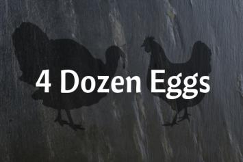 4 Dozen Eggs