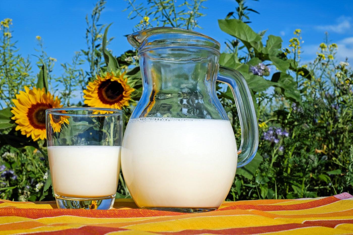 Raw Grass-fed Dairy