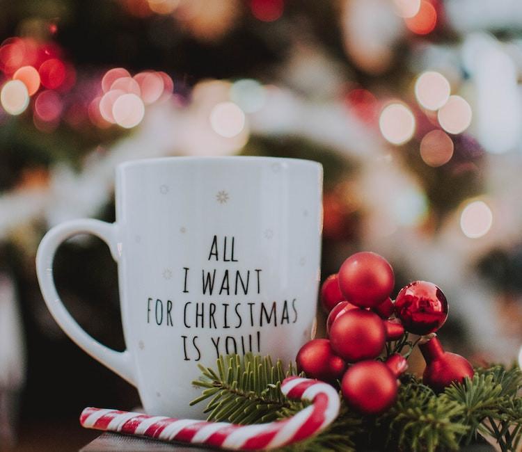 {Barbie News} Christmas Specials & Ferments of Joy