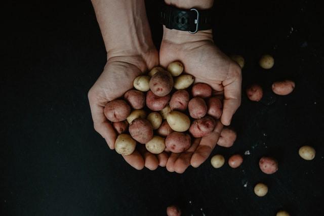 Syracuse Salt Potatoes