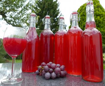 Grape Kombucha - 1/2 Gallon