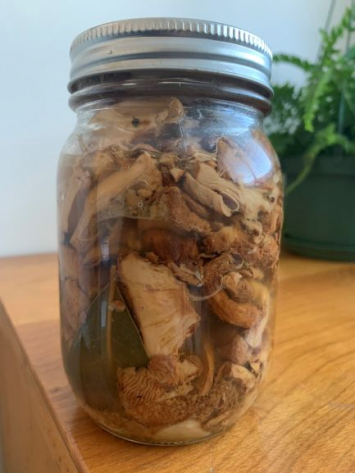 Preserved foraged chanterelle mushrooms