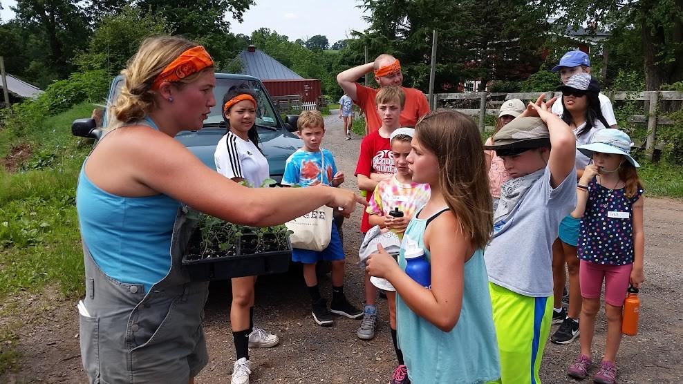 Farm Camp (June 17th - 21st)