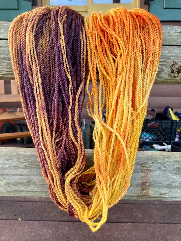 Yarn Skein - Florida Cracker - Colorway: Elizabeth the First