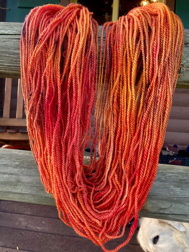 Yarn Skein - Florida Cracker - Colorway: Autumn Equinox