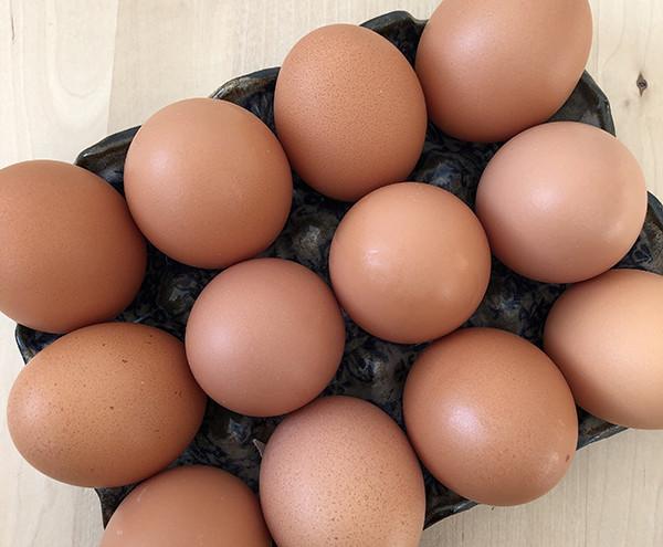 Pasture Raised Eggs, 1 Dozen