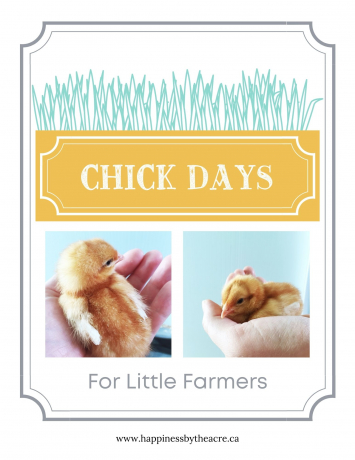 Chick Days Educational Package