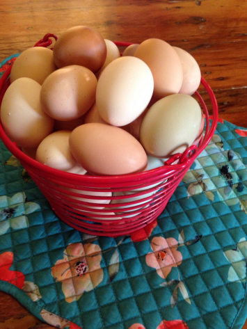 Pastured Eggs - Basket