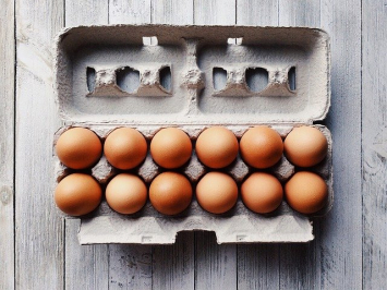 Free Range Eggs - Large