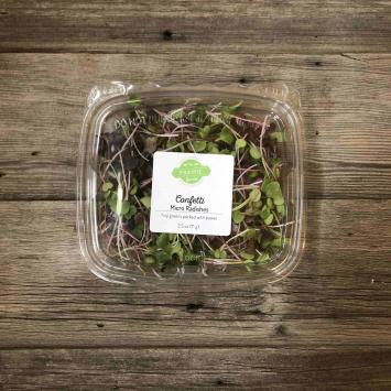 Microgreens - Confetti Radish
