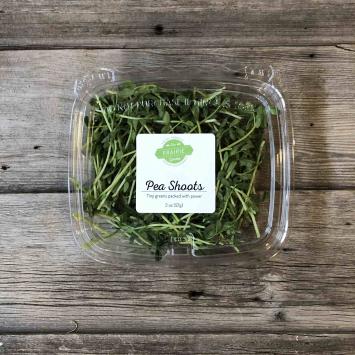 Microgreens - Pea Shoots