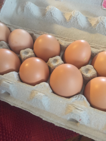 EGGS: CHICKEN - Organic Free Range