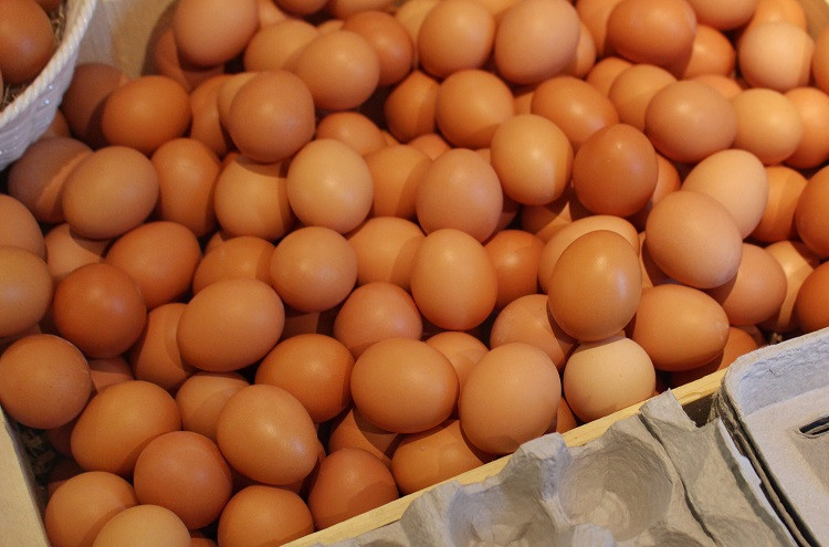 Have You Been Able To Try Pullet Eggs?
