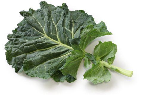 Madeley Kale