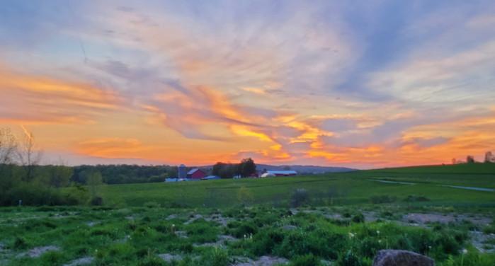 Henry Miller's Organic Produce Farm Fort Plain, NY