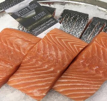 Fresh Wester Ross Salmon