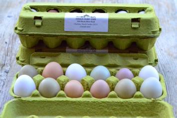 Truly Free-Range - Hodges Family Farm Eggs