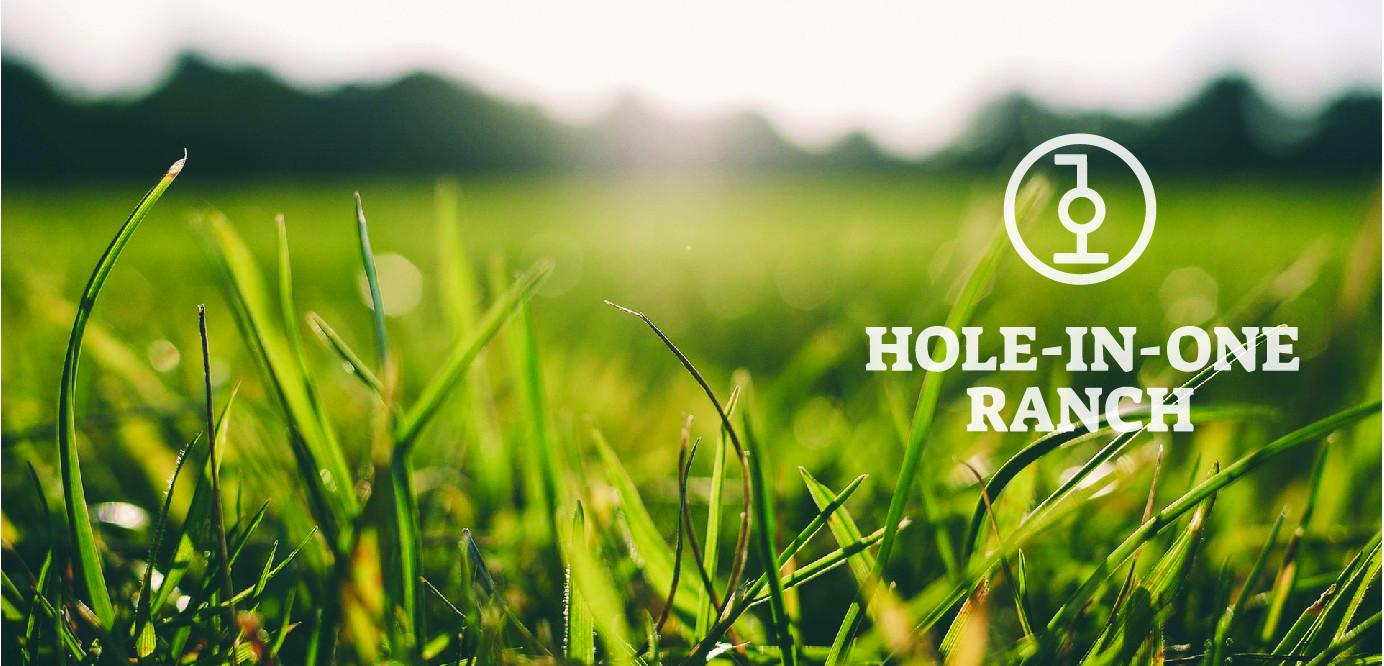 HoleInOne.jpg