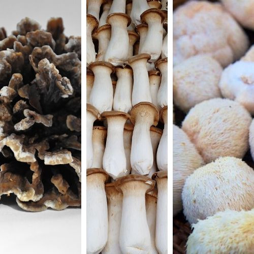 Mixed Mushrooms (Gourmet Varieties)