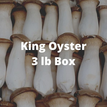 King Oyster Mushrooms (3 lb box)