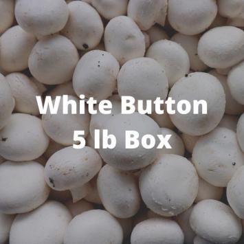 White Button Mushrooms (5 lb Box)