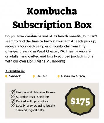 Winter Kombucha Subscription