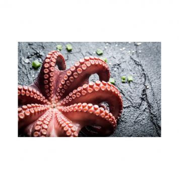 Frozen Spanish Octopus