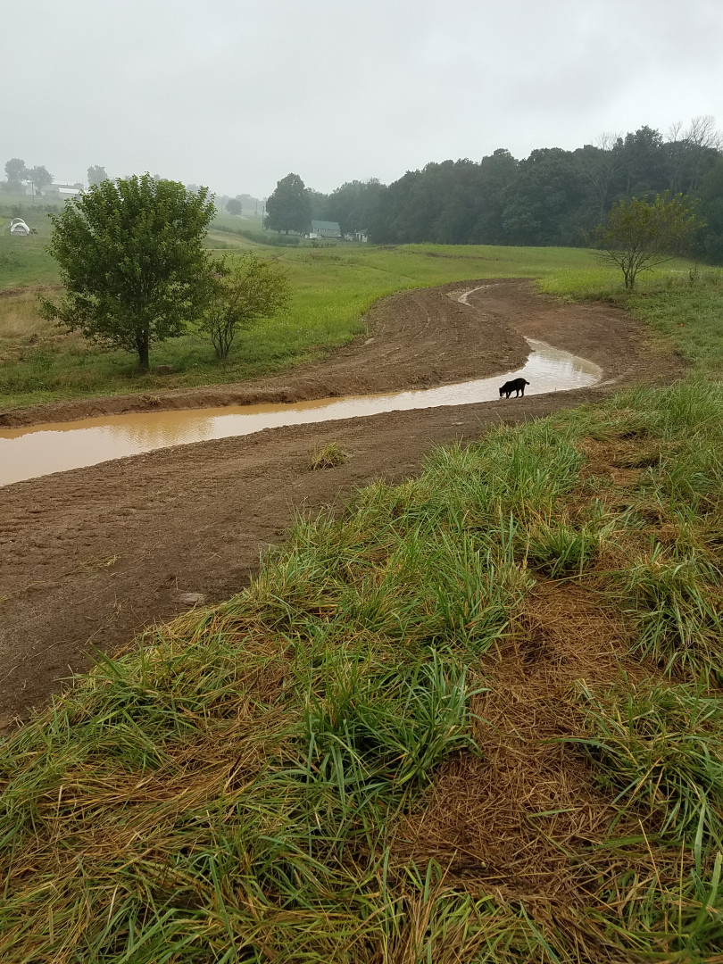 """Keyline swale after 2"""" rain during install"""