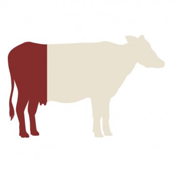 Grass-fed Quarter Beef (for Farm Pickup)