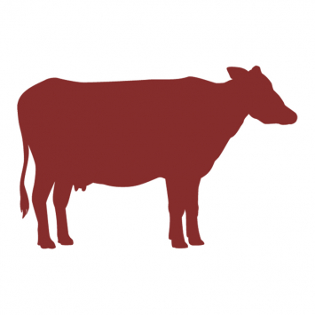 Grass-fed Whole Beef (for Farm Pickup)