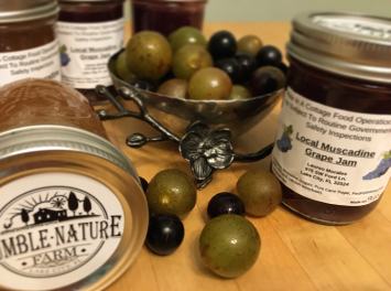 Local Muscadine Grape Jam
