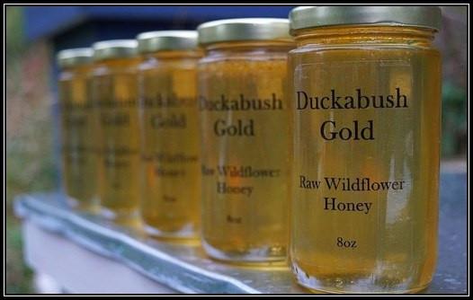 Washington Wildflower Honey