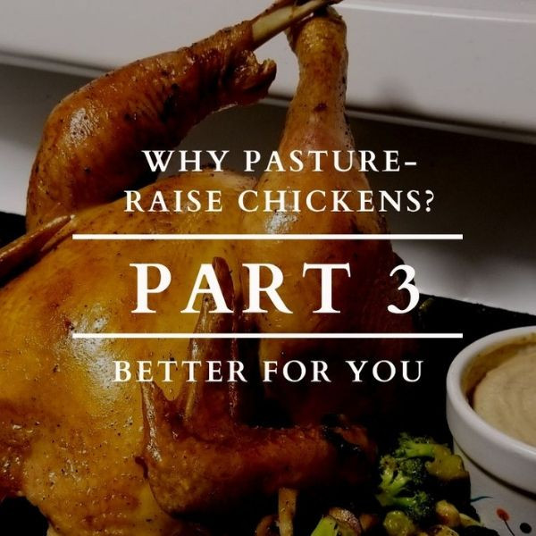 Why Pasture Raise Chickens? Part 3: Better for You