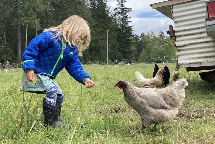 Your Local Pasture Farm Tour