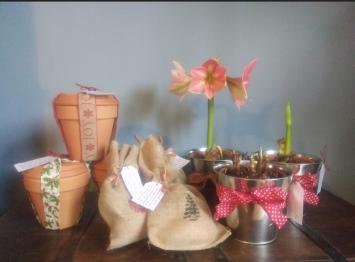 Blooming Bulbs