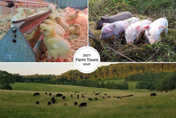 7/3/21 @ 10 a.m. Guided Farm Tour