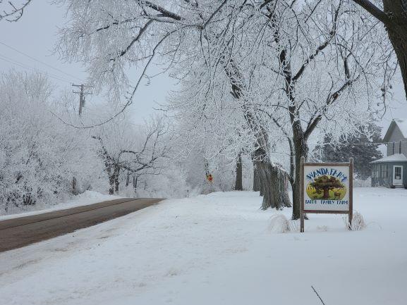 Winter Frosty Ice Land