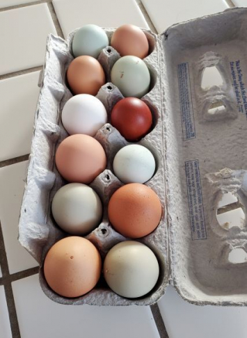 Fresh Pastured Eggs
