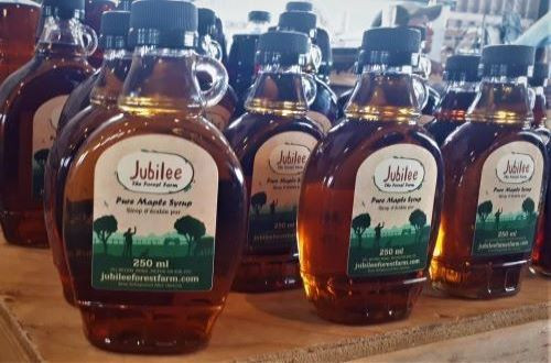 Maple Syrup 250 ml- Amber
