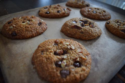 Sourdough Pecan Chocolate Chip Cookies