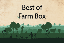 Best of Farm Box + 1 Free Jubilee Raw Honey