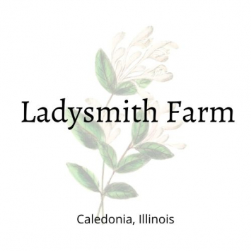 Eggs  - Ladysmith Farm / from Pasture Raised Hens