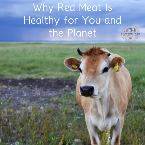 Why Red Meat is Healthy for You and the Planet