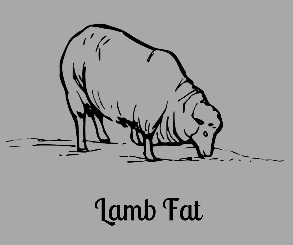 Lamb Fat
