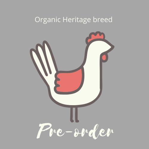 Organic Heritage Chicken Preorder - Summer 2021
