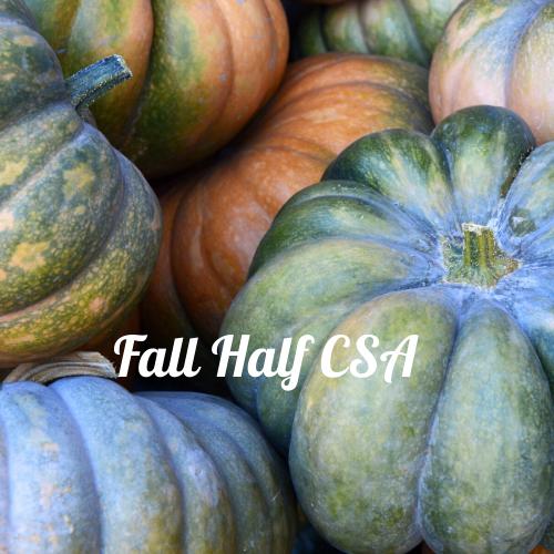 Fall Half CSA - Weekly