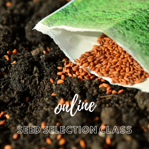 Online Seed Selection Class